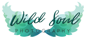 Wild Soul Photography